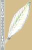 red-xiii-11-kristallkamm